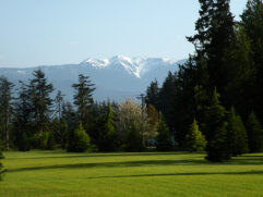 View of snow-capped mountain from lawn