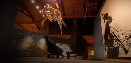 Museum with dinosaurs and boats